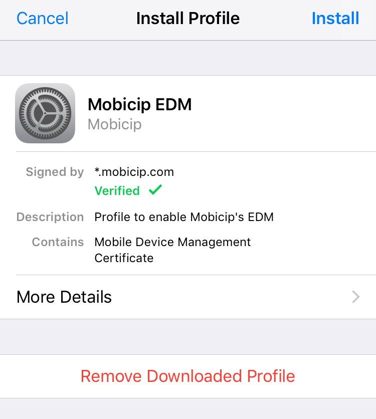 Install Mobicip MDM