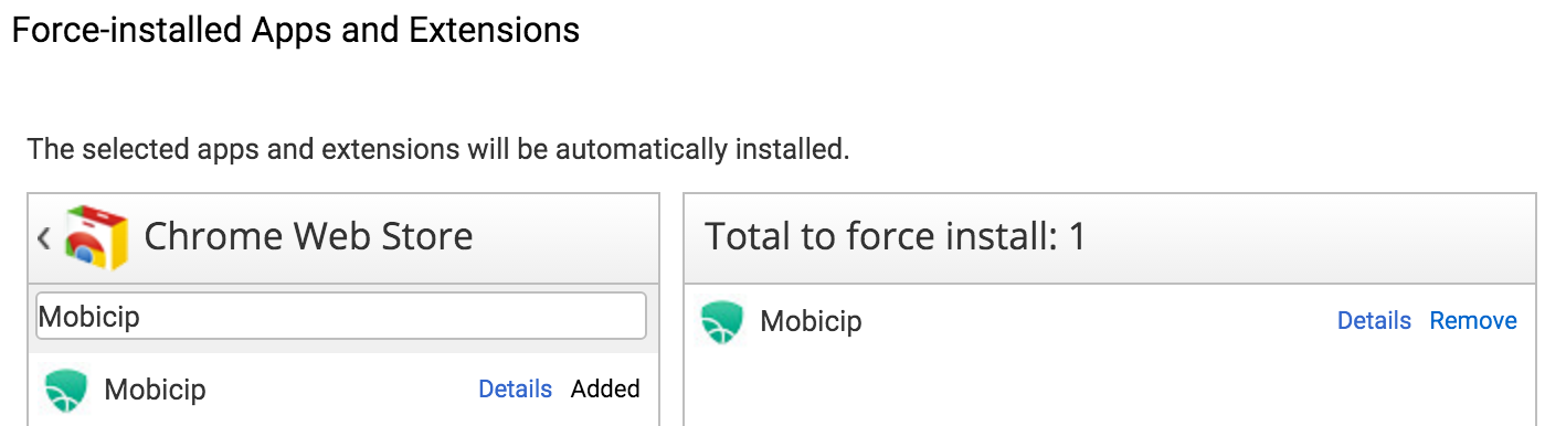 Force install Web Store app